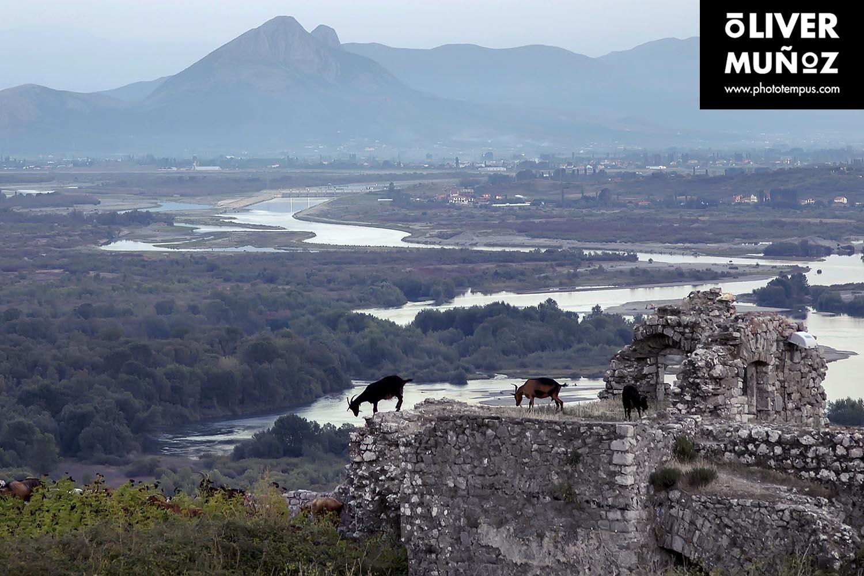 Der Skanderbeg-Albanien